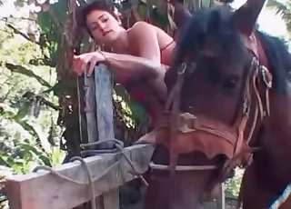Kinky little pony enjoying brutal bestiality