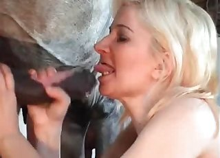 Hot zoophile is giving a BJ to a stallion