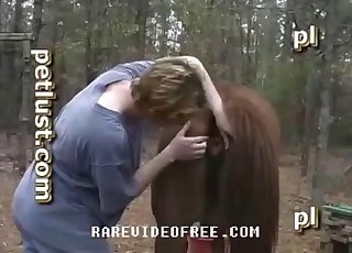 Zoo fucker drills his horse from behind on cam